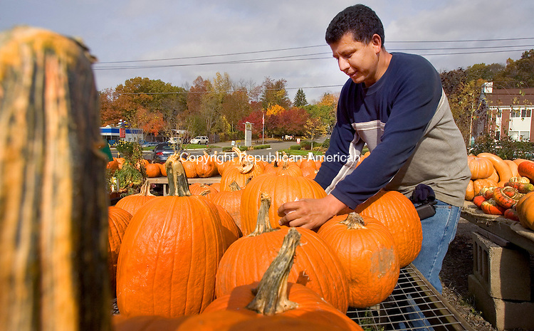 MIDDLEBURY, CT. 25 October 2010-102510SV01--Oscar Rene of Vaszauskas Farm arranges some of hundreds of pumpkins for sale at the stand, the last week before Halloween, on Middlebury Road in Middlebury Monday.<br /> Steven Valenti Republican-American