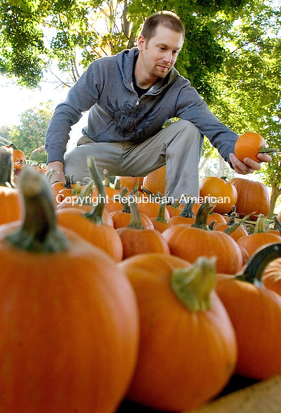 MIDDLEBURY CT. 30 September 2013-093013SV06-Matt Morris of Middlebury sets up the pumpkins for sale on the green in Middlebury Monday. The Middlebury Congregational Church started selling the pumpkins Monday and will continue until Halloween. The sale supports the churches youth group.<br /> Steven Valenti Republican-American