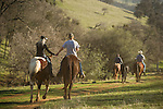 Late winter calf marking, branding and doctoring at the hilltop corral above the Busi Ranch in the Sierra Nevada Foothills of Amador County, Calif...Ty Busi and Ivana Kusar hold hands on horseback