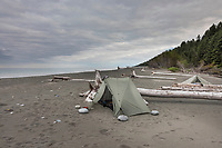 Tent camp on the beach of the Gulf of Alaska, Pacific ocean coast, Glacier Bay National Park, Southeast, Alaska
