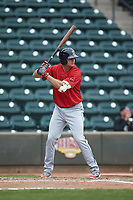 Bobby Dalbec (29) of the Salem Red Sox at bat against the Winston-Salem Dash at BB&T Ballpark on April 22, 2018 in Winston-Salem, North Carolina.  The Red Sox defeated the Dash 6-4 in 10 innings.  (Brian Westerholt/Four Seam Images)