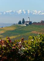Italien, Piemont, Region Langhe, Weinberge vor der Bergkette Alpi Cozi , Dorfkirche | Italy, Piedmont, Region Langhe, vineyard, Alpi Cozi mountains, village church