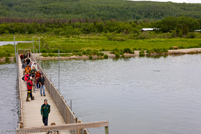 Tourist cross the foot bridge over the Brooks river to gain access to the bear viewing platform. Katmai National Park, southwest, Alaska.
