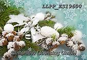 Maira, CHRISTMAS SYMBOLS, WEIHNACHTEN SYMBOLE, NAVIDAD SÍMBOLOS, photos+++++,LLPPZS19600,#xx#