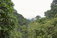 FOREST_LOCATION_90086