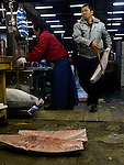 Tokyo Tsukiji Fish Market: cutting frozen tuna on a bandsaw..Tokyo Metropolitan Central Wholesale Market or Tsukiji Fish Market is the largest fish market in the world.