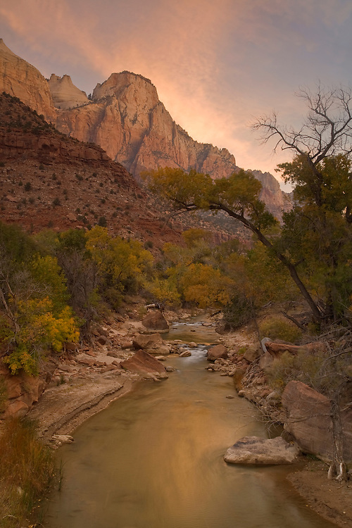 The Sentinel and the Virgin River in autumn at Zion National Park, Utah