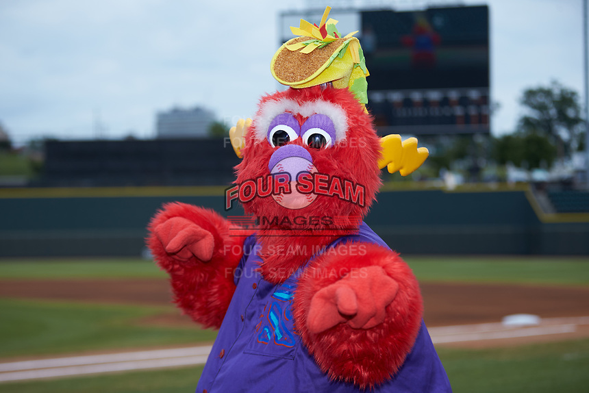 """Winston-Salem Rayados mascot """"Bolt"""" poses for a photo prior to the game against the Lynchburg Hillcats at BB&T Ballpark on June 23, 2019 in Winston-Salem, North Carolina. The Hillcats defeated the Rayados 12-9 in 11 innings. (Brian Westerholt/Four Seam Images)"""