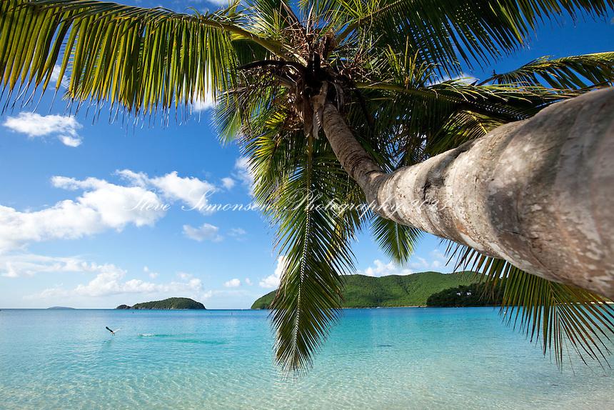 Maho Bay<br /> Virgin Islands National Park<br /> St. John, U.S. Virgin Islands