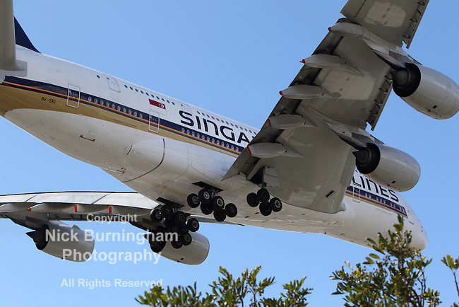 LOS ANGELES, CALIFORNIA, USA - MARCH 8, 2013 - Singapore Airlines Airbus A-380 lands at Los Angeles Airport on March 8, 2013. The plane is the world's largest passenger airliner and seats 525 people.