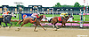Yo Berbs winning at Delaware Park on 6/27/15