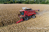 63801-12709 Harvesting corn in fall-aerial  Marion Co. IL
