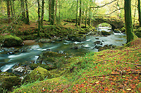 The River Croe, Ardgartan, the Argyll Forest Park,