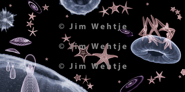 X-ray image of a space scene (color on black) by Jim Wehtje, specialist in x-ray art and design images.