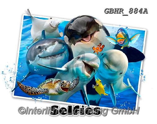 Howard, SELFIES, paintings+++++,GBHR884A,#Selfies#, EVERYDAY ,underwater,maritime,dolphins ,sharks,maritime