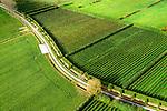 Nederland, Zeeland, Gemeente Borsele, 19-10-2014;  Zak van Zuid-Beveland, omgeving 's Gravenpolder. Kleinschalig landscap van binnendijken en kleine polders, 'oudland'. Boomgaarden en jonge aanplant.<br /> Old Polders and ancient hedges in Zealand, Southwest Netherlands.<br /> luchtfoto (toeslag op standard tarieven);<br /> aerial photo (additional fee required);<br /> copyright foto/photo Siebe Swart