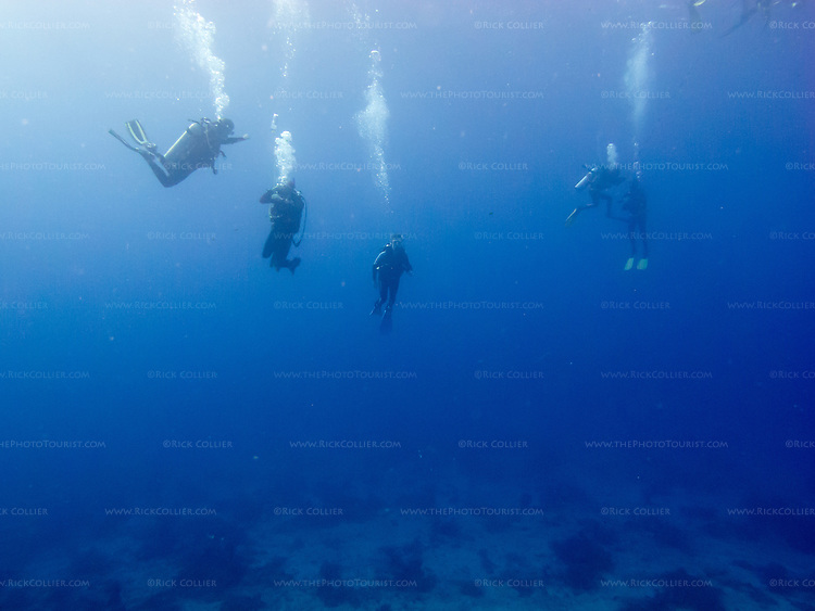 Divers perform their safety stop above Monad Shoal, returning to the waiting dive boats after a morning dive to see thresher sharks. (Above Monad Shoal, near Malapascua Island, Central Visayas, the Philippines.)