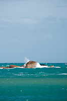 The Sisters rocks off Horseshoe Bay, Port Elliot, catch the spray from a wave breaking in the turquoise waters.