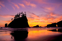 sunset at Olympic National Park, Olympic Peninsula, Washington, USA, Pacific Ocean