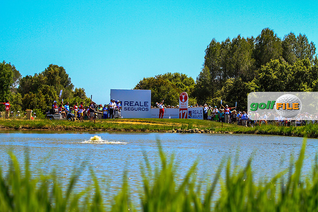 Miguel Angel Jimenez (ESP) on the 17th tee during Round 4 of the Open de Espana  in Club de Golf el Prat, Barcelona on Sunday 17th May 2015.<br /> Picture:  Thos Caffrey / www.golffile.ie