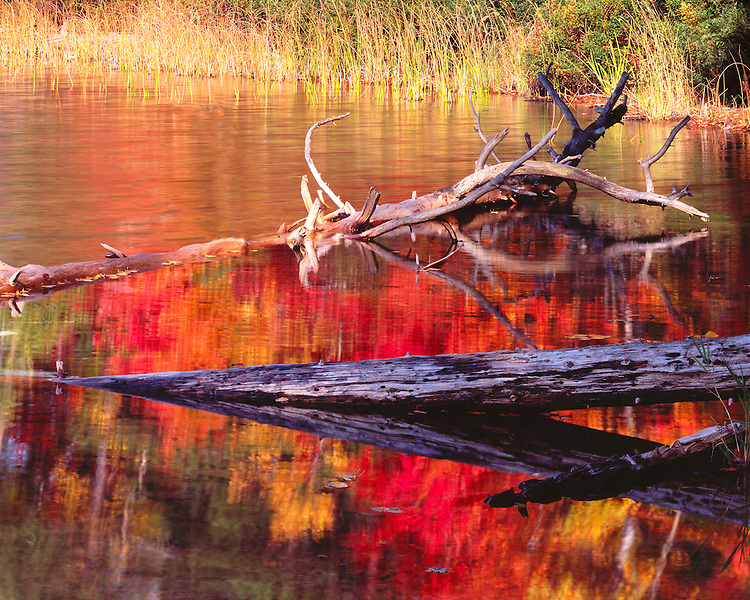 Reflected fall color in Moccasin Lake; Hiawatha National Forest; Upper Penisula, MI
