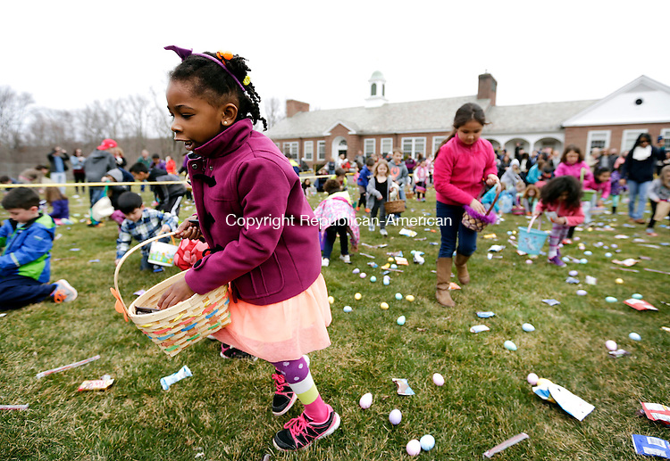 Middlebury, CT- 26 March 2016-032616CM10-  Samuell Blackwood, 6, of Middlebury looks for candy during the Middlebury Easter Egg Hunt at the Shepardson Community Center Field on Saturday.  The event, which is sponsored by the Middlebury Police Social Club, was held for town children from ages 3 to 10. Christopher Massa Republican-American