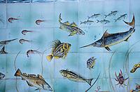 Europe/Italie/Côte Amalfitaine/Campagnie/Amalfi : Céramique représentant des poissons sur les murs d'une poissonnerie
