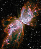 "Washington, DC - September 9, 2009 -- This celestial object looks like a delicate butterfly. But it is far from serene.  What resemble dainty butterfly wings are actually roiling cauldrons of gas heated to more than 36,000 degrees Fahrenheit. The gas is tearing across space at more than 600,000 miles an hour -- fast enough to travel from Earth to the moon in 24 minutes!   A dying star that was once about five times the mass of the Sun is at the center of this fury. It has ejected its envelope of gases and is now unleashing a stream of ultraviolet radiation that is making the cast-off material glow. This object is an example of a planetary nebula, so-named because many of them have a round appearance resembling that of a planet when viewed through a small telescope. The Wide Field Camera 3 (WFC3), a new camera aboard the National Aeronautics and Space Administration's (NASA) Hubble Space Telescope, snapped this image of the planetary nebula, catalogued as NGC 6302, but more popularly called the Bug Nebula or the Butterfly Nebula. WFC3 was installed by NASA astronauts in May 2009, during the servicing mission to upgrade and repair the 19-year-old Hubble telescope.  NGC 6302 lies within our Milky Way galaxy, roughly 3,800 light-years away in the constellation Scorpius. The glowing gas is the star's outer layers, expelled over about 2,200 years. The ""butterfly"" stretches for more than two light-years, which is about half the distance from the Sun to the nearest star, Alpha Centauri. The central star itself cannot be seen, because it is hidden within a doughnut-shaped ring of dust, which appears as a dark band pinching the nebula in the center. The thick dust belt constricts the star's outflow, creating the classic ""bipolar"" or hourglass shape displayed by some planetary nebulae.  The star's surface temperature is estimated to be about 400,000 degrees Fahrenheit, making it one of the hottest known stars in our galaxy. Spectroscopic observations made with ground-based tel"