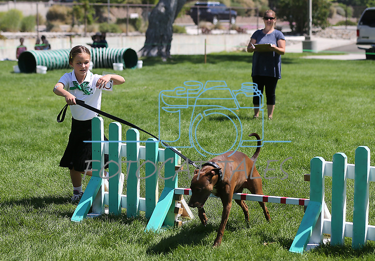 4-H member Vivi Mellow, of Carson City, and her dog Annie run the dog agility course at the Carson City Fair at Fuji Park on Tuesday, July 25, 2017. <br /> Photo by Cathleen Allison/Nevada Photo Source