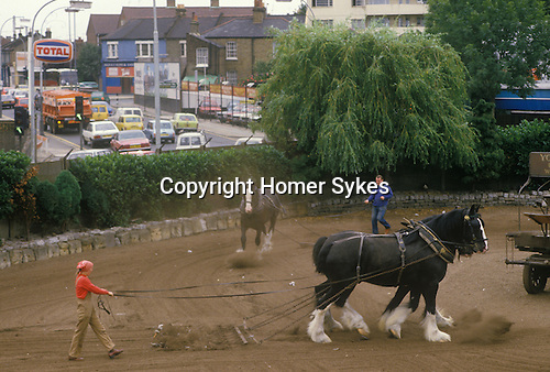 Youngs Brewery Wandsworth south west London. SW18. England UK 1980s. Heavy horse exercise training. Wandsworth round about one way system. Looking east along Armoury way which is the A3 going towards towards central London.<br />