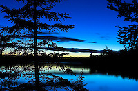 Pine trees silhouetted against blue twilight at Mitchell Lake near Ely, Minnesota.