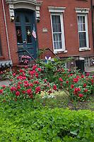 Carroll Gardens
