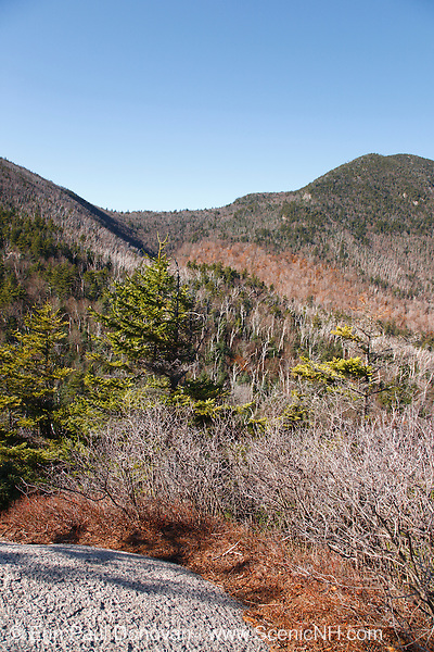 Sandwich Range Wilderness - Mount Passaconaway from Square Ledge in the White Mountains, New Hampshire USA. This area was logged during the Swift River Railroad era, which was a logging railroad in operation from 1906 - 1916.