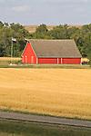 Red wooden barn, cut grain field, North Dakota