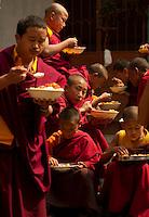 Buddhist Monks at lunch break  in Sikkim India
