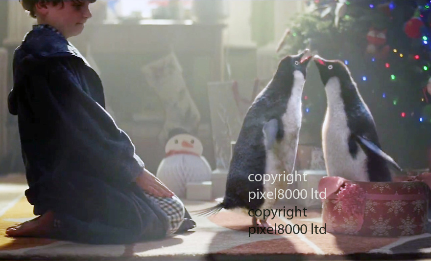 John Lewis Advert Xmas 2014<br /> Stars little boy named &quot;Sam&quot; and &quot;Monty The Penguin&quot;<br /> <br /> Monty gets a female mate for Xmas. And he is happy<br /> <br /> <br /> <br /> <br /> Pic supplied by Pixel 8000 Ltd