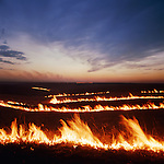 Waves of fire near cattle pens, Chase County, Kansas 1990
