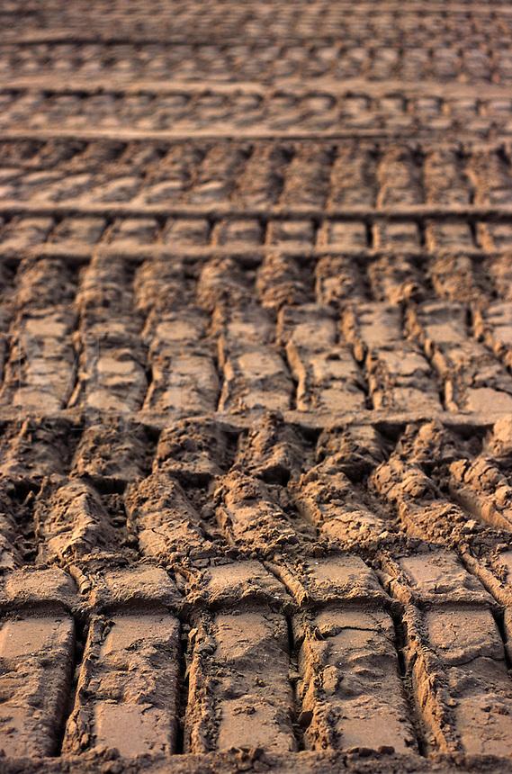 bulldozer tracks in sand