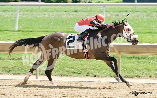 Our Bernie winning at Delaware Park on 9/10/14