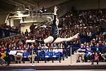 2016 BYU Women's Gymnastics vs UC Davis, Boise St