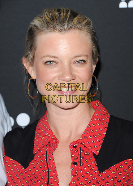 Amy Smart<br /> The Myspace Event held at The El Rey Theatre in Los Angeles, California, USA.<br /> June 12th, 2013   <br /> headshot portrait red print shirt black hoop earrings gold <br /> CAP/DVS<br /> &copy;DVS/Capital Pictures