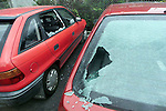 Some of the cars which were smashed in Jack Doran Motors on Wednesday night..Picture Paul Mohan Newsfile