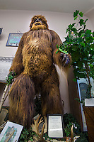 Statue of Bigfoot from below, International Cryptozoology museum, Portland Maine, USA