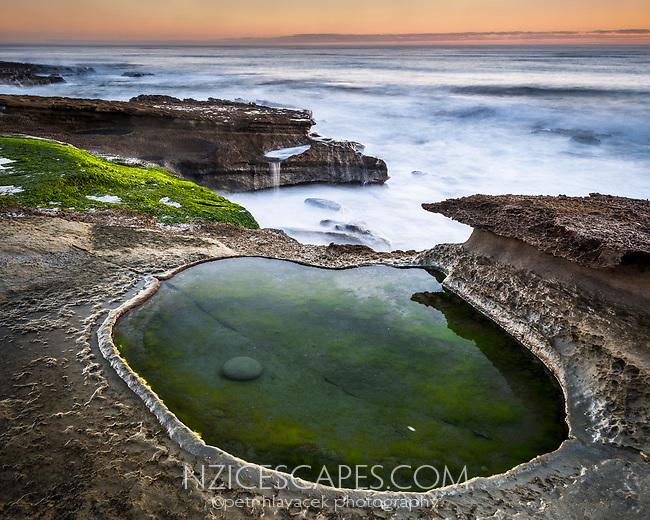Limestone rocks with water pools on Truman Track under sunset in Punakaiki, Paparoa National Park, Buller Region, West Coast, New Zealand, NZ