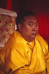 Tibet, The 10th Panchen Lama, Lobsang Trinley Lhündrub Chokyi Gyaltsen