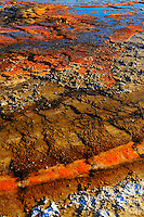 The colors present of the Grand Prismatic Geyser basin at Yellowstone National Park are due to an interesting combination of minerals and lifeforms. The milky blue features are due to silica in suspension in the hot water. A great deal of the red-orange that can be seen is due to iron oxides and arsenic compounds. The springs at the thermal basin that are emerald green in color are due to the blue of refracted light in combination with the yellow of sulfur lining the pool.