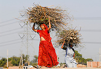 "Indien Neu Delhi , Frauen in einem Slum am Stadtrand tragen Feuerholz zur Nutzung als Kochenergie  - Holz Energie Brennholz Brennmaterial xagndaz | .India New Delhi , women carry firewood for cooking - fuel wood .| [ copyright (c) Joerg Boethling / agenda , Veroeffentlichung nur gegen Honorar und Belegexemplar an / publication only with royalties and copy to:  agenda PG   Rothestr. 66   Germany D-22765 Hamburg   ph. ++49 40 391 907 14   e-mail: boethling@agenda-fototext.de   www.agenda-fototext.de   Bank: Hamburger Sparkasse  BLZ 200 505 50  Kto. 1281 120 178   IBAN: DE96 2005 0550 1281 1201 78   BIC: ""HASPDEHH"" ] [#0,26,121#]"
