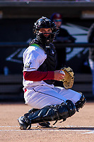 Wisconsin Timber Rattlers catcher KJ Harrison (24) looks into the dugout between innings of a Midwest League game against the Beloit Snappers on April 7, 2018 at Fox Cities Stadium in Appleton, Wisconsin. Beloit defeated Wisconsin 10-1. (Brad Krause/Four Seam Images)