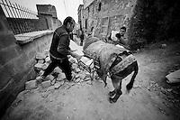 Ils travaillent avec  des jeunes kurdes, pauvres. Leur patron est l'homme sur la gauche de l'image. Il possède les mulets nécessaires au transport des pierres dans le lacis des ruelles où aucun engin motorisé ne peut passer. Il a un contrat avec la municipalité et exploite un peu ses ouvriers qui n'ont pas vraiment le choix.<br /> <br /> They work with young Kurdish poor. Their boss is the man on the left of the image. It has mules needed to transport stones in the maze of alleys where no motorized vehicle can pass. He has a contract with the municipality and operates some its workers who do not really have a choice.