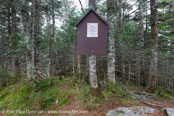 October 2016 - Unauthorized cutting of trees over the last few years has improved a viewpoint (out of view) on the summit of Mt Tecumseh in New Hampshire. And this sign on the summit explains the legal ramifications if caught cutting trees on the summit of Mt Tecumseh.